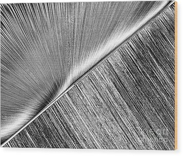 Rays And Lines. Black And White Wood Print by Ausra Huntington nee Paulauskaite