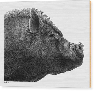Razorback Wood Print