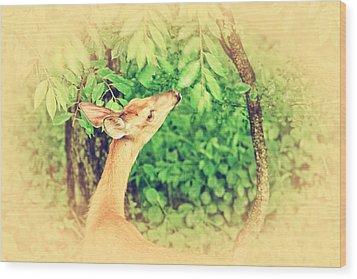 Reaching Wood Print by Karol Livote