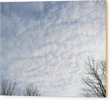 Wood Print featuring the photograph Reaching The Clouds by Pamela Hyde Wilson
