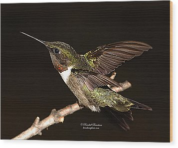 Wood Print featuring the photograph Ready Set Go Hummer by Randall Branham