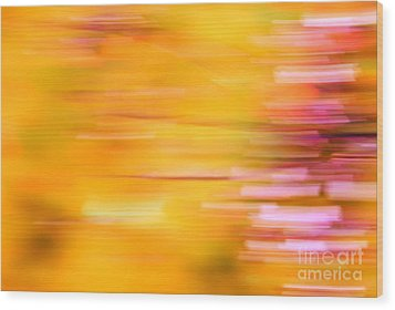 Rectangulism - S07a Wood Print by Variance Collections