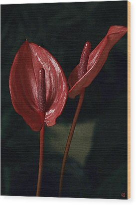 Red Again Wood Print by Barbara Middleton