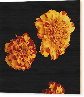 Red And Yellow Wood Print by Barry Shaffer