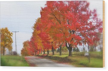 Red And Yellow Mercer Pa Wood Print by Tom Bush IV