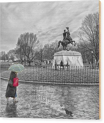Red Bag Lafayette Park Wood Print by Jim Moore