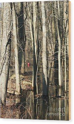 Red Ball 1 Wood Print