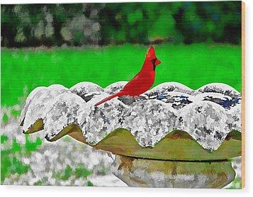 Red Bird In Bath Wood Print