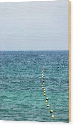 Red Buoy Wood Print by Daniel Kulinski