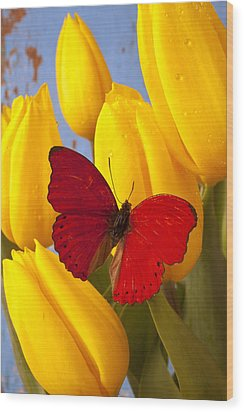 Red Butterful On Yellow Tulips Wood Print by Garry Gay