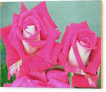 Red Carnations Wood Print by Vicky Tarcau