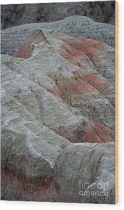 Red Wood Print by Chris Brewington Photography LLC