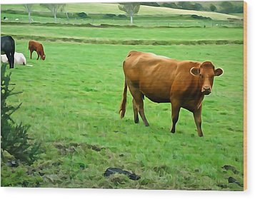 Wood Print featuring the photograph Red Cow by Charlie and Norma Brock