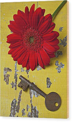 Red Daisy And Old Key Wood Print by Garry Gay