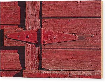 Red Door Henge Wood Print by Garry Gay