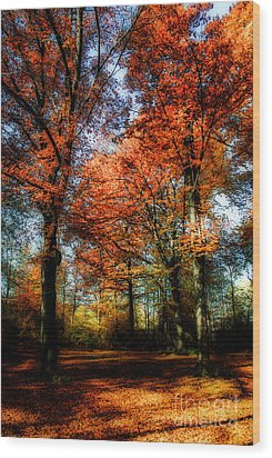 Red Fall Wood Print by Hannes Cmarits