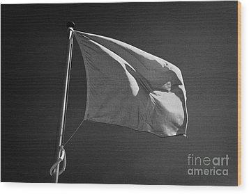 red flag flying marking the hanoverian english line Culloden moor battlefield site highlands scotl Wood Print by Joe Fox