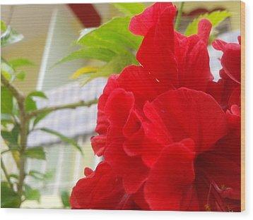 Red Flower Wood Print by Chetan Ranjan
