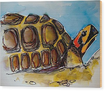Red Foot Tortoise Wood Print by Richard Greene