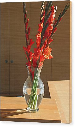 Red Glads Wood Print by Suzanne Gaff