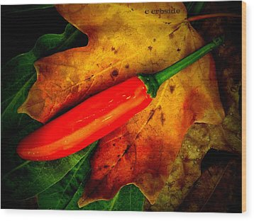 Red Hot Chili Pepper Wood Print by Chris Berry