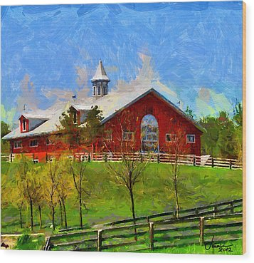 Red House In Caledon Tnm Wood Print by Vincent DiNovici