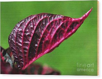 Red Leaf Wood Print by Kaye Menner