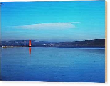 Red Lighthouse In Cayuga Lake New York Wood Print by Paul Ge