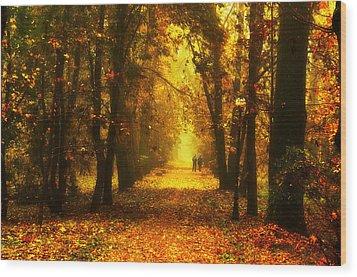 Red Park Alley Wood Print by Jaroslaw Grudzinski