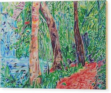 Red Path 03 Wood Print by Bradley Bishko