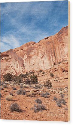 Red Rock And Blue Skies 2 Wood Print by Bob and Nancy Kendrick