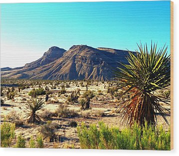 Red Rock Canyon 10 Wood Print by Randall Weidner