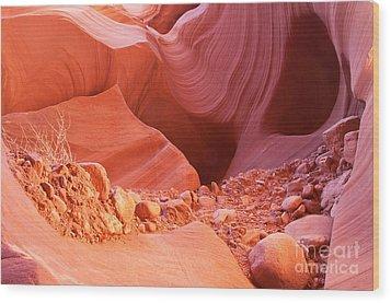 Red Rock Gems Wood Print by Bob and Nancy Kendrick