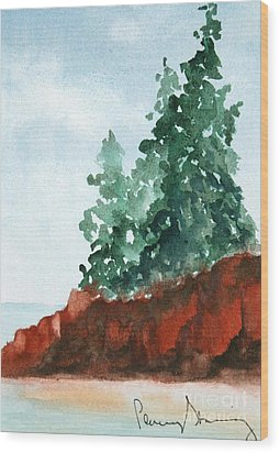 Red Rocks On Waters Edge Wood Print