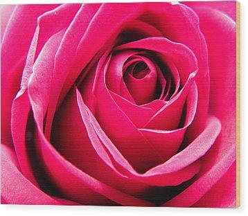 Red Rose Macro Wood Print by Sandi OReilly