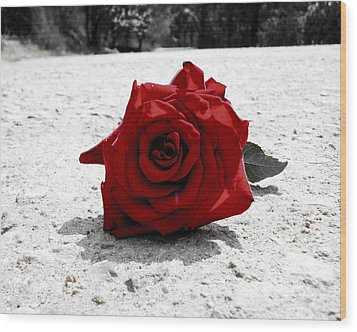 Red Rose On The Road Wood Print by Sumit Mehndiratta