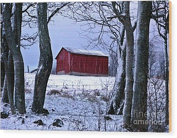 Red Shed In Winter Wood Print