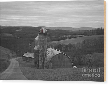Red Striped Silo Wood Print by Randy Edwards