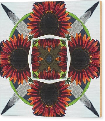Red Sunflower And Feather Wood Print by Trina Stephenson