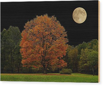 Wood Print featuring the photograph Red Tree by Brian Hughes