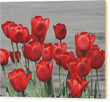 Wood Print featuring the photograph Red Tulips Welcome Spring by Penny Hunt