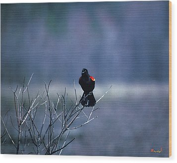Wood Print featuring the photograph Red-wings Morning Call 10o by Gerry Gantt