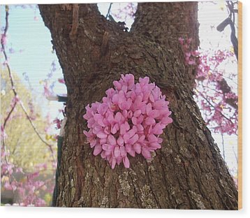 Redbud Tree Two Thousand Twelve Wood Print
