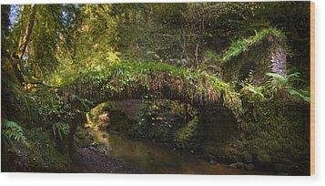 Reelig Bridge And Grotto Wood Print