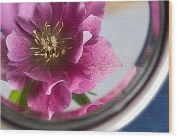 Reflected Beauty Wood Print by Shirley Mitchell