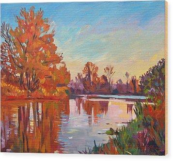 Reflected Impressions Wood Print by David Lloyd Glover