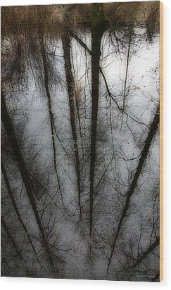 Reflecting On A Winter Day Wood Print by Winston Rockwell