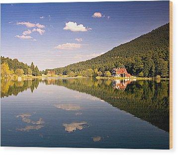 Reflection - 2 Wood Print by Okan YILMAZ
