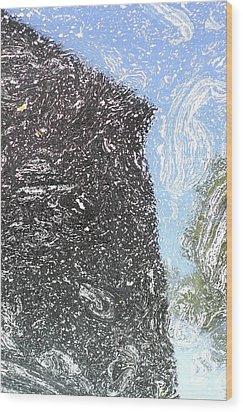 Reflection 2 Wood Print by Sara Walsh