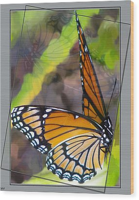 Reflection Back Wood Print by Debra     Vatalaro